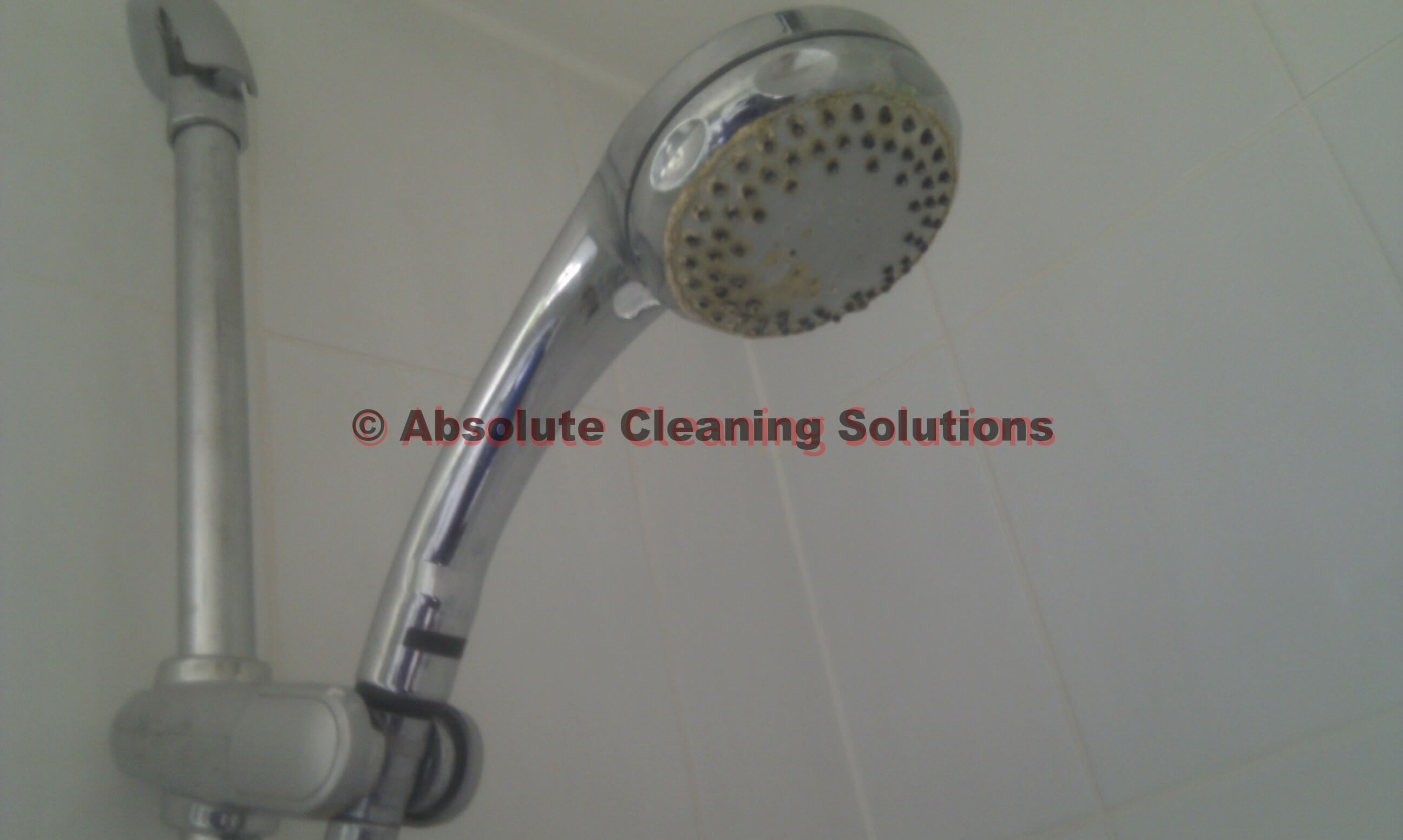 descale shower head cleaner 1 absolutecleaning. Black Bedroom Furniture Sets. Home Design Ideas